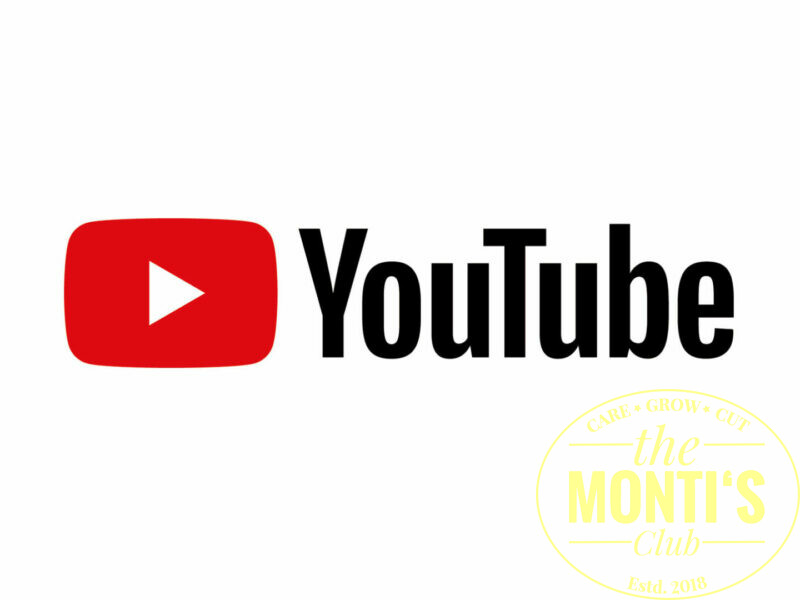 the Monti´s Club YouTube Channel